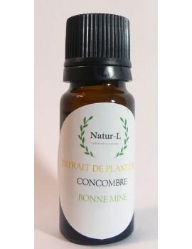 Extrait de Concombre Bio 10 ml